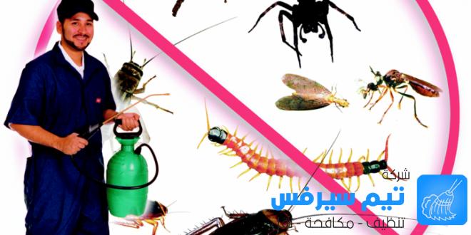 شركة رش مبيدات في عمان