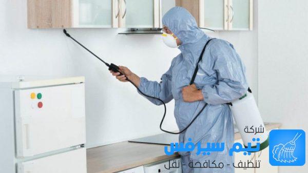 شركة مكافحة الحشرات في عمان